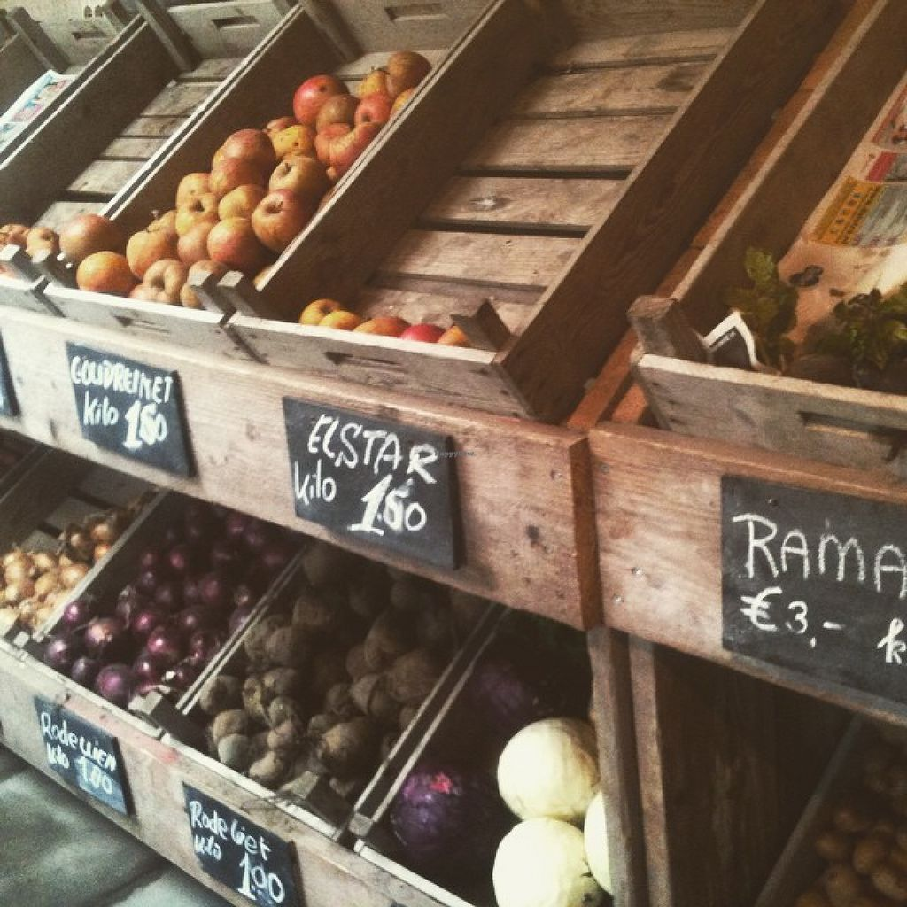 "Photo of Doarpstun Snakkeburen  by <a href=""/members/profile/Groeneavonturen"">Groeneavonturen</a> <br/>Vegetables and fruit <br/> August 4, 2015  - <a href='/contact/abuse/image/61551/112225'>Report</a>"