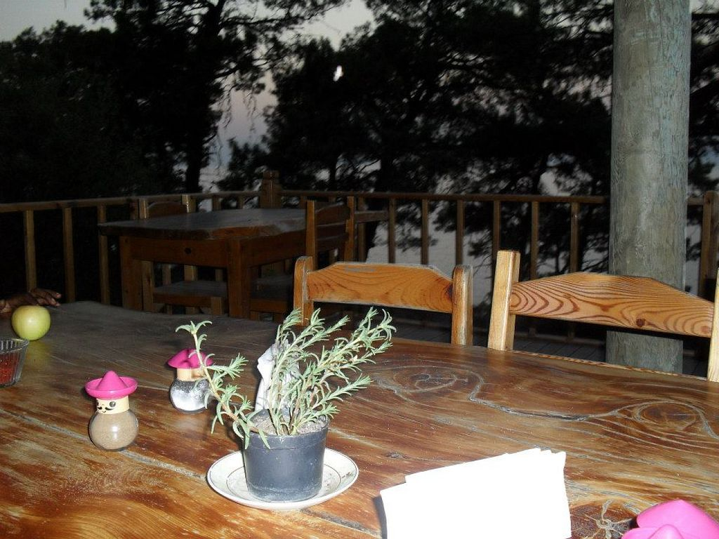 """Photo of Yuva Eco Centre  by <a href=""""/members/profile/Good%20for%20Vegans"""">Good for Vegans</a> <br/>Outdoor dining on a decking with a roof. Amazing food and beautiful views <br/> August 6, 2015  - <a href='/contact/abuse/image/61618/112503'>Report</a>"""