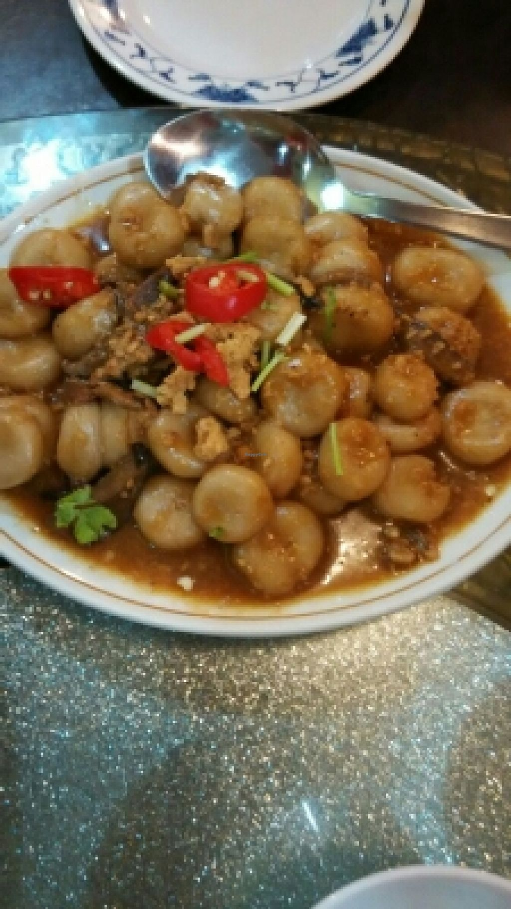 """Photo of Nature Vegetarian Delights  by <a href=""""/members/profile/JimmySeah"""">JimmySeah</a> <br/>fried 'abacus' <br/> October 17, 2015  - <a href='/contact/abuse/image/6162/121581'>Report</a>"""