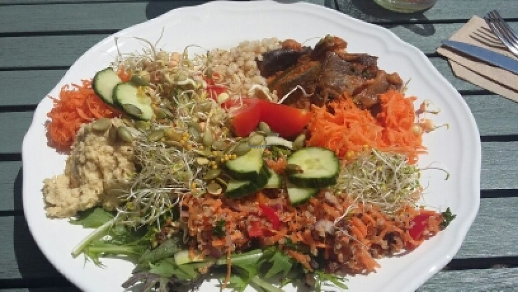 """Photo of Oats Healthy Living Store  by <a href=""""/members/profile/Vegan-Vinyl-Avengers"""">Vegan-Vinyl-Avengers</a> <br/>£7.95 for a large plate from the self-service buffet.  <br/> June 2, 2016  - <a href='/contact/abuse/image/61674/151888'>Report</a>"""
