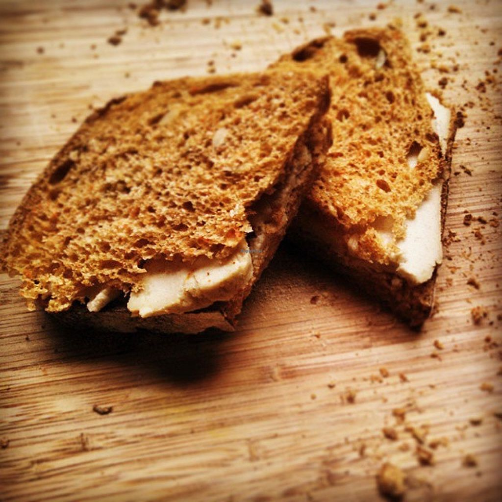 """Photo of Pure Abundance  by <a href=""""/members/profile/AllisonWunderland"""">AllisonWunderland</a> <br/>Grilled cheese sandwich with Pure Abundance Luna Cashew Cheese & Hampton Creek Chipotle Mayo on La Calavera Carrot Spelt Bread <br/> August 12, 2015  - <a href='/contact/abuse/image/61697/113313'>Report</a>"""