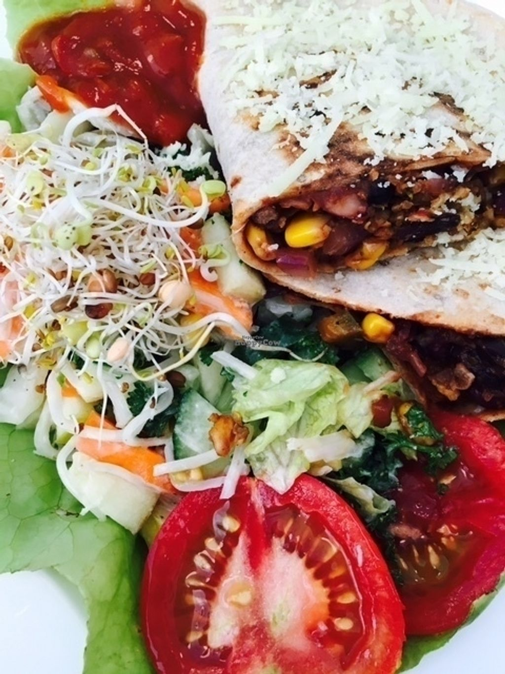 """Photo of CLOSED: Veganity Foods  by <a href=""""/members/profile/VeganityFoods"""">VeganityFoods</a> <br/>Quescadillas with Veganity Meatless Mince <br/> October 13, 2016  - <a href='/contact/abuse/image/61705/181871'>Report</a>"""