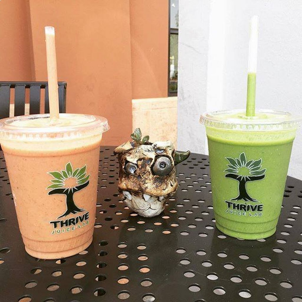 "Photo of Thrive Juice Lab  by <a href=""/members/profile/community"">community</a> <br/>fruit shakes  <br/> August 24, 2015  - <a href='/contact/abuse/image/61794/114945'>Report</a>"