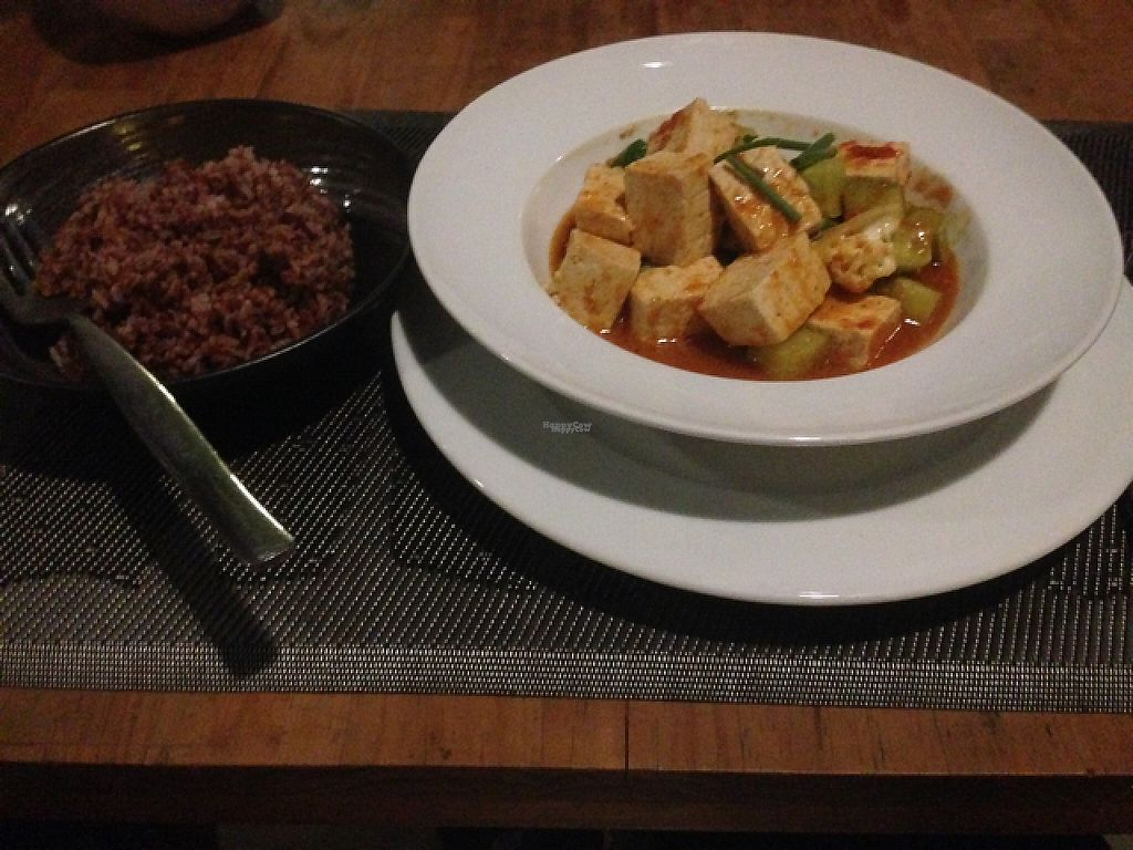 """Photo of CLOSED: Banlle Vegetarian Restaurant  by <a href=""""/members/profile/Poodle"""">Poodle</a> <br/>sweet and sour tofu <br/> January 14, 2017  - <a href='/contact/abuse/image/61795/212004'>Report</a>"""