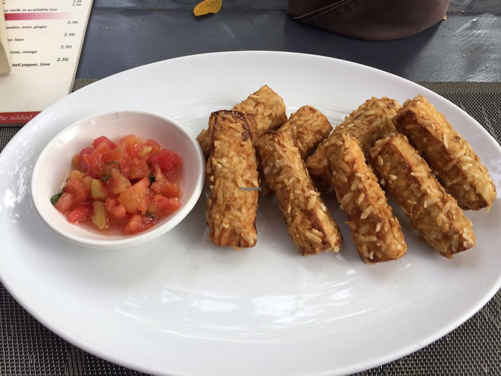 """Photo of CLOSED: Banlle Vegetarian Restaurant  by <a href=""""/members/profile/layla555"""">layla555</a> <br/>eggplant tempura starters <br/> March 9, 2017  - <a href='/contact/abuse/image/61795/234545'>Report</a>"""