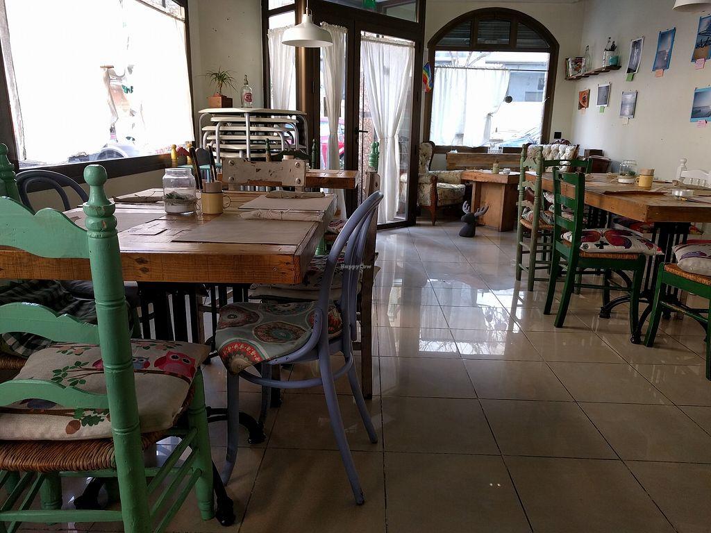 "Photo of La Libelula Vegan Cafe  by <a href=""/members/profile/Ijon-Tichy"">Ijon-Tichy</a> <br/>Decor <br/> February 6, 2018  - <a href='/contact/abuse/image/61896/355736'>Report</a>"