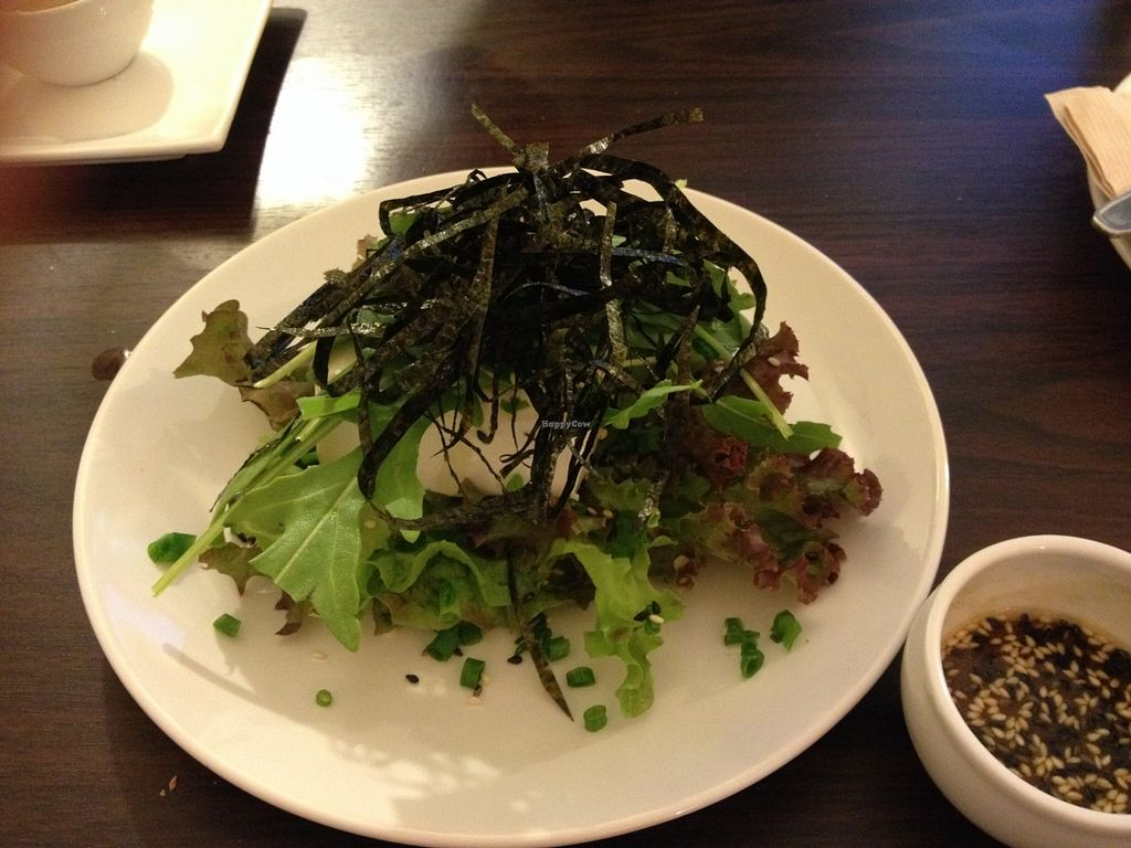 Photo of CLOSED: Veggie Bean  by lantern <br/>Wasabi tofu <br/> March 20, 2016  - <a href='/contact/abuse/image/61979/140705'>Report</a>