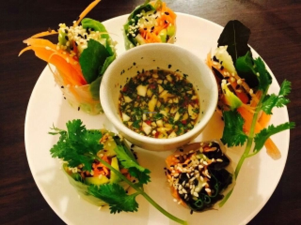 """Photo of CLOSED: Veggie Bean  by <a href=""""/members/profile/Tastyvege"""">Tastyvege</a> <br/>Fresh spring roll <br/> July 1, 2016  - <a href='/contact/abuse/image/61979/157176'>Report</a>"""