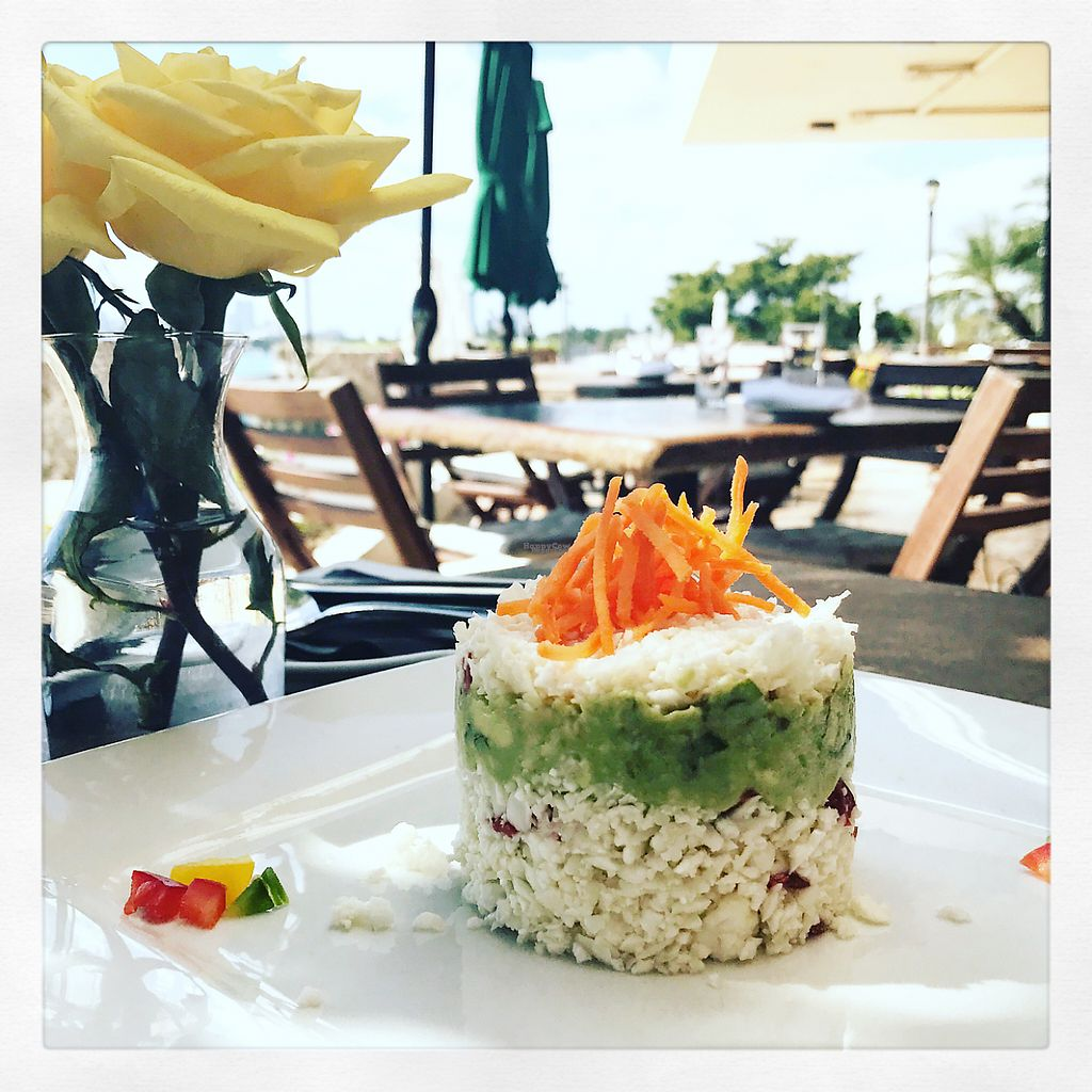 "Photo of Full Bloom  by <a href=""/members/profile/RomyVegPer"">RomyVegPer</a> <br/>Sun dried tomatoes, cauliflower & avocado mousse <br/> February 12, 2017  - <a href='/contact/abuse/image/61993/225984'>Report</a>"