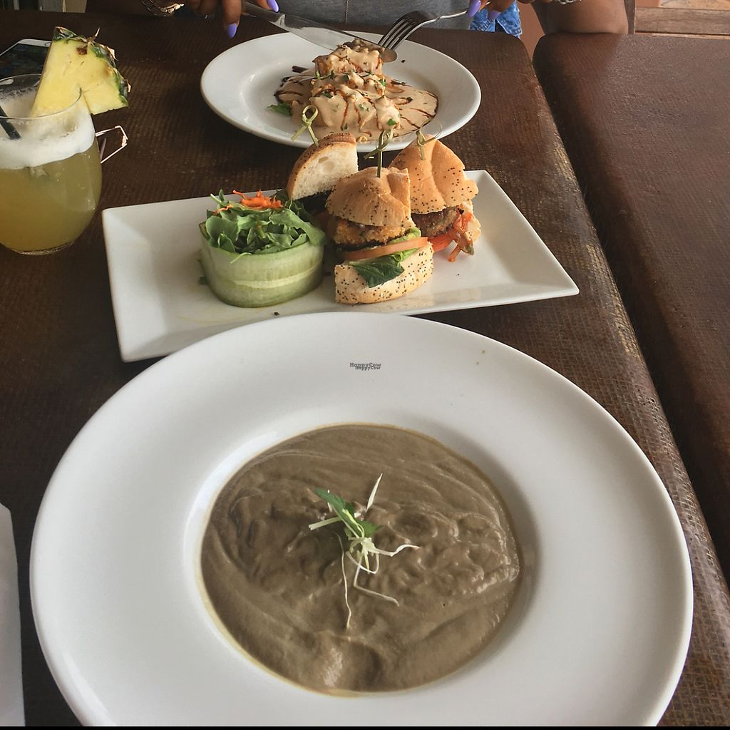 "Photo of Full Bloom  by <a href=""/members/profile/Scottwild"">Scottwild</a> <br/>porcini soup/sliders/plantain in a peanut sauce <br/> April 23, 2017  - <a href='/contact/abuse/image/61993/251290'>Report</a>"