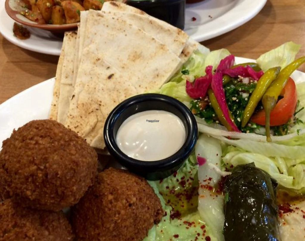 """Photo of Falafel   by <a href=""""/members/profile/CiaraSlevin"""">CiaraSlevin</a> <br/>falafel plate <br/> August 21, 2016  - <a href='/contact/abuse/image/62049/239754'>Report</a>"""