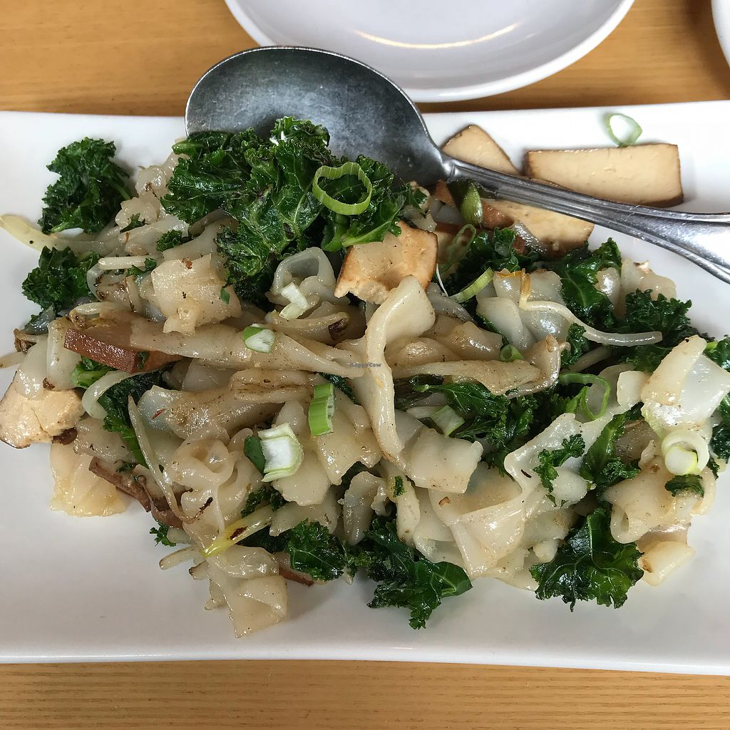 """Photo of Empire Chinese Kitchen  by <a href=""""/members/profile/Sarah%20P"""">Sarah P</a> <br/>Kale noodles with added tofu <br/> April 19, 2018  - <a href='/contact/abuse/image/62227/388296'>Report</a>"""