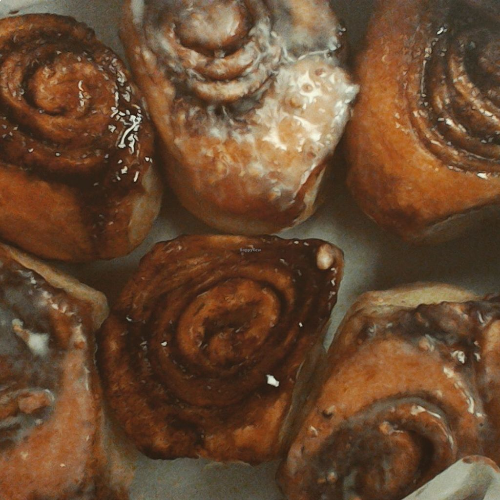 "Photo of CLOSED: Niche Vegan Bakery  by <a href=""/members/profile/BriannaRowden"">BriannaRowden</a> <br/>Vegan Cinnamon Buns, with and without icing <br/> August 19, 2015  - <a href='/contact/abuse/image/62230/114321'>Report</a>"