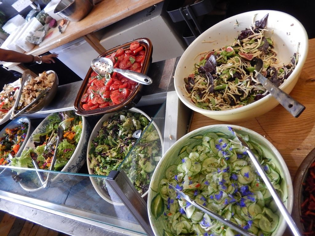 "Photo of Seeds 2 Cafe  by <a href=""/members/profile/CLRtraveller"">CLRtraveller</a> <br/>some of the salads <br/> August 22, 2015  - <a href='/contact/abuse/image/62350/114679'>Report</a>"