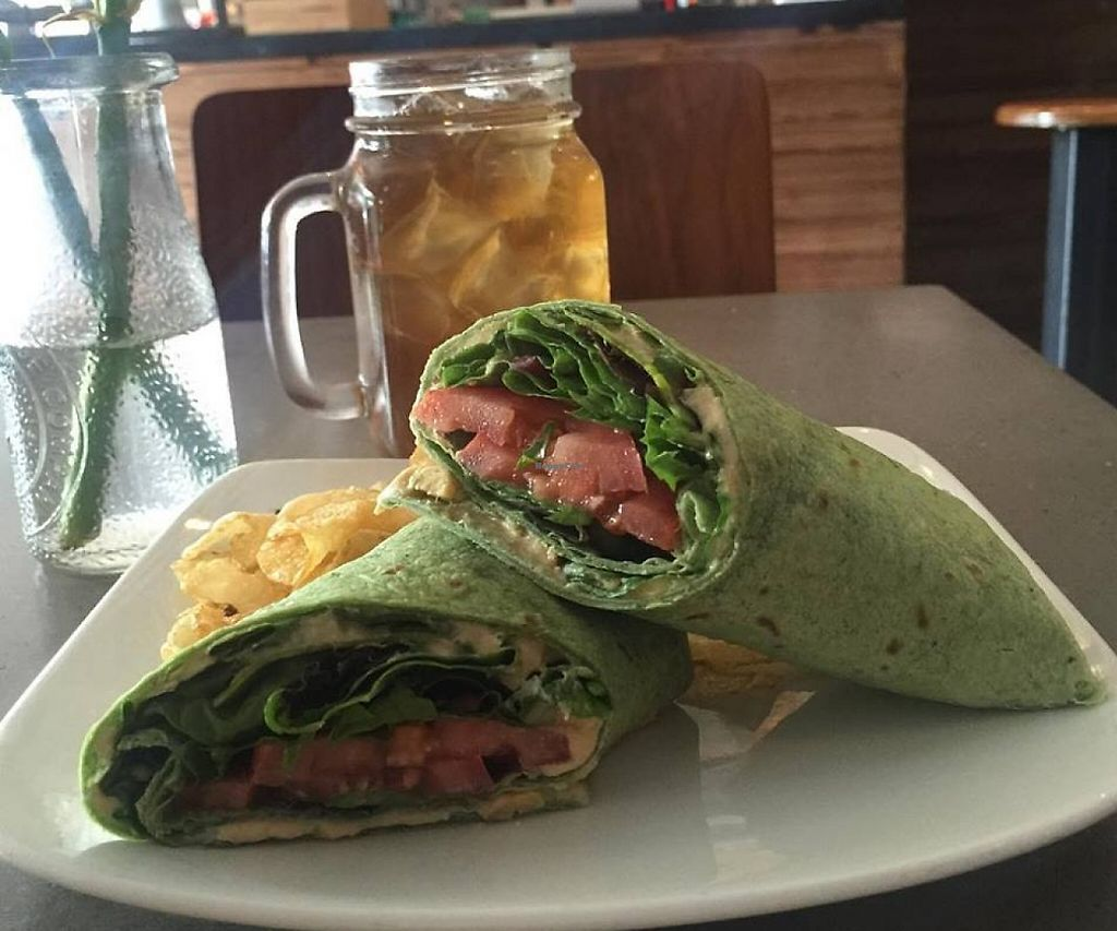 "Photo of Red Dessert Dive  by <a href=""/members/profile/community"">community</a> <br/>hummus wrap  <br/> September 1, 2015  - <a href='/contact/abuse/image/62354/228351'>Report</a>"