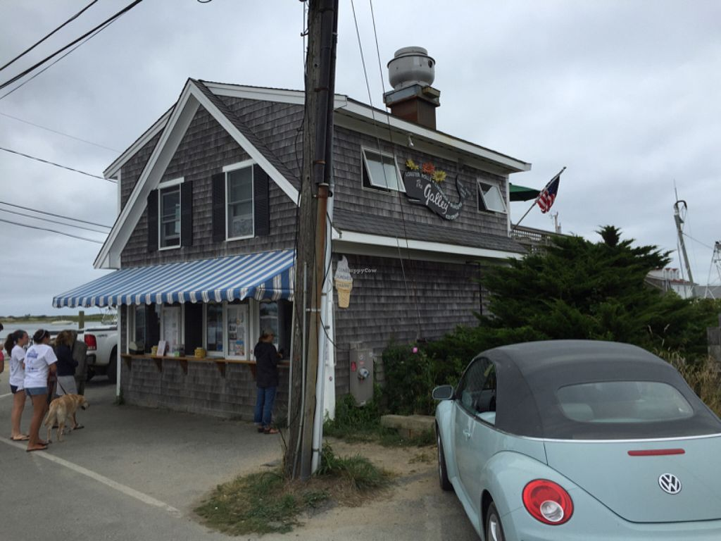 "Photo of Menemsha Galley  by <a href=""/members/profile/John%20Aviator"">John Aviator</a> <br/>The Galley Seafood Shack <br/> July 9, 2016  - <a href='/contact/abuse/image/62404/158678'>Report</a>"