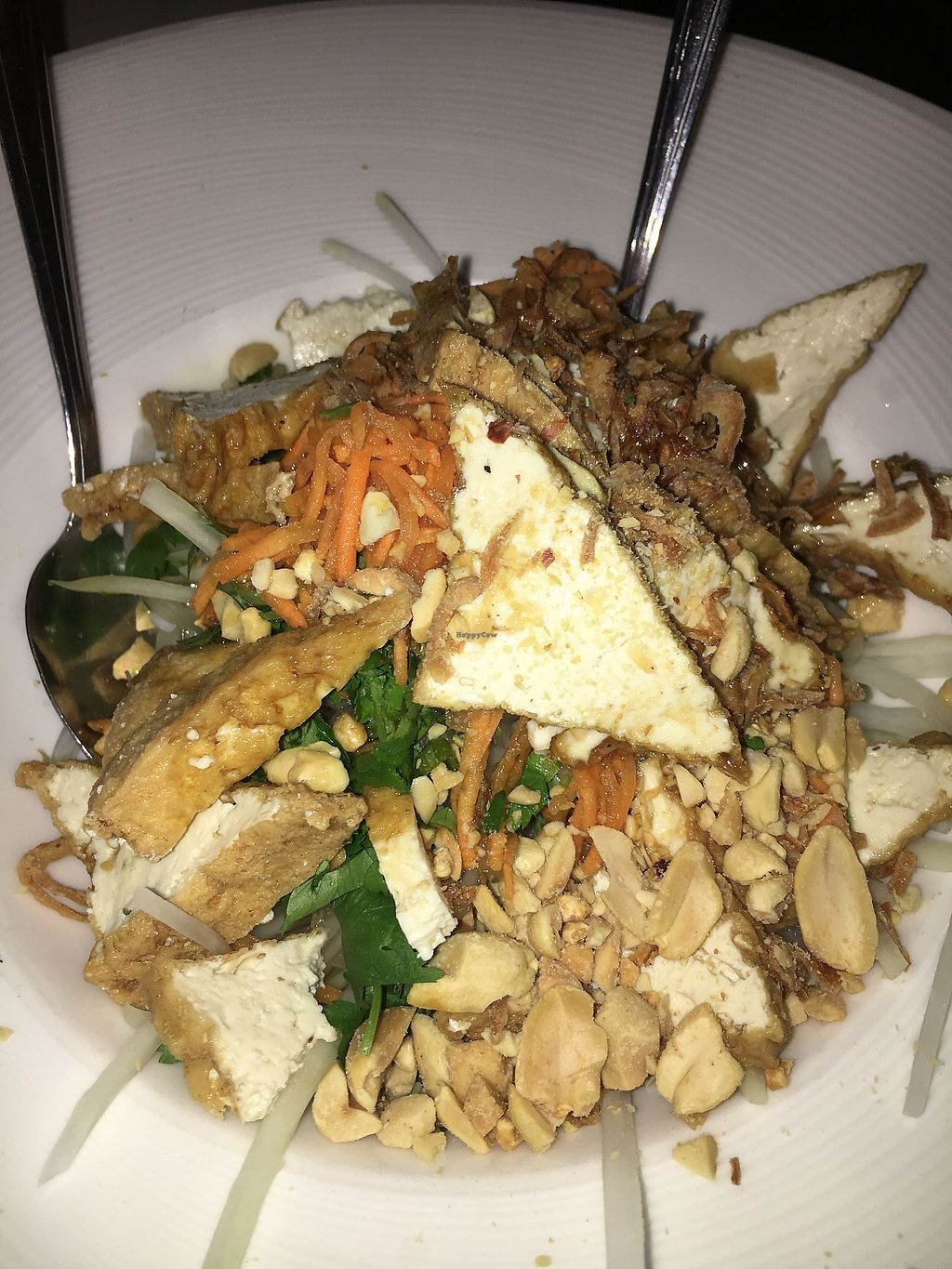 """Photo of Bowl of Pho  by <a href=""""/members/profile/daroff"""">daroff</a> <br/>Papaya Salad <br/> November 6, 2017  - <a href='/contact/abuse/image/62550/322646'>Report</a>"""