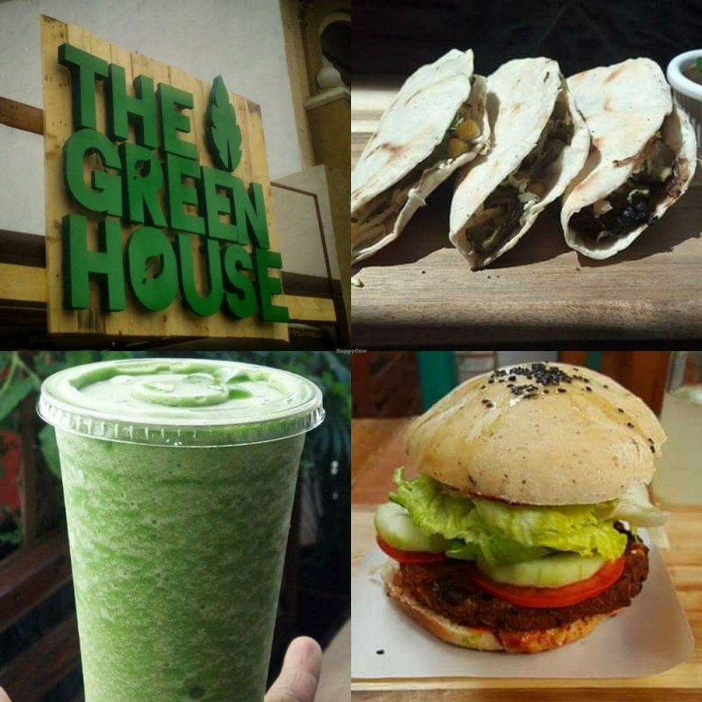 """Photo of The Green House  by <a href=""""/members/profile/Syara"""">Syara</a> <br/>The Best place ❤️ <br/> July 8, 2016  - <a href='/contact/abuse/image/62588/158359'>Report</a>"""