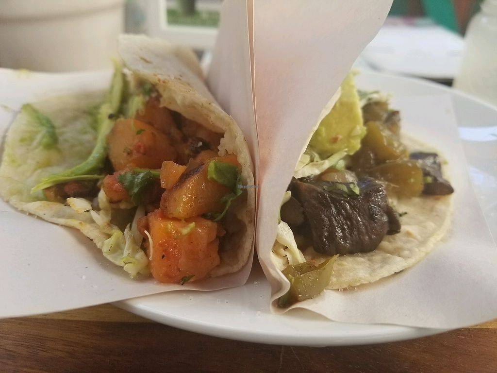 """Photo of The Green House  by <a href=""""/members/profile/kenvegan"""">kenvegan</a> <br/>vegan tacos  <br/> March 1, 2018  - <a href='/contact/abuse/image/62588/365523'>Report</a>"""