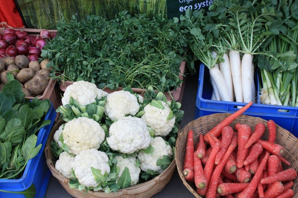 """Photo of Live Organic  by <a href=""""/members/profile/community"""">community</a> <br/>organic vegetables  <br/> September 12, 2015  - <a href='/contact/abuse/image/62683/117390'>Report</a>"""