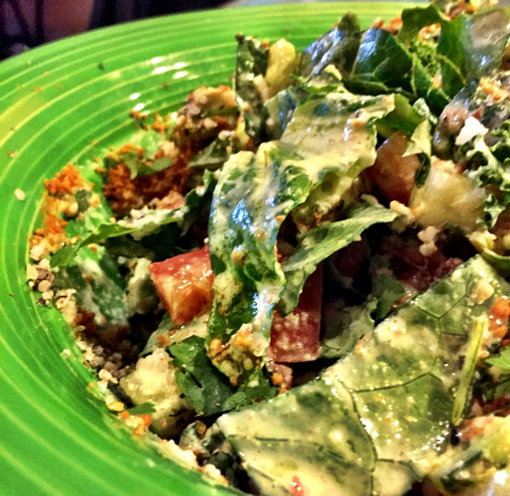 """Photo of Omar's Rawtopia  by <a href=""""/members/profile/ACTaylor"""">ACTaylor</a> <br/>Delicious Solito salad! <br/> March 18, 2016  - <a href='/contact/abuse/image/6268/140381'>Report</a>"""