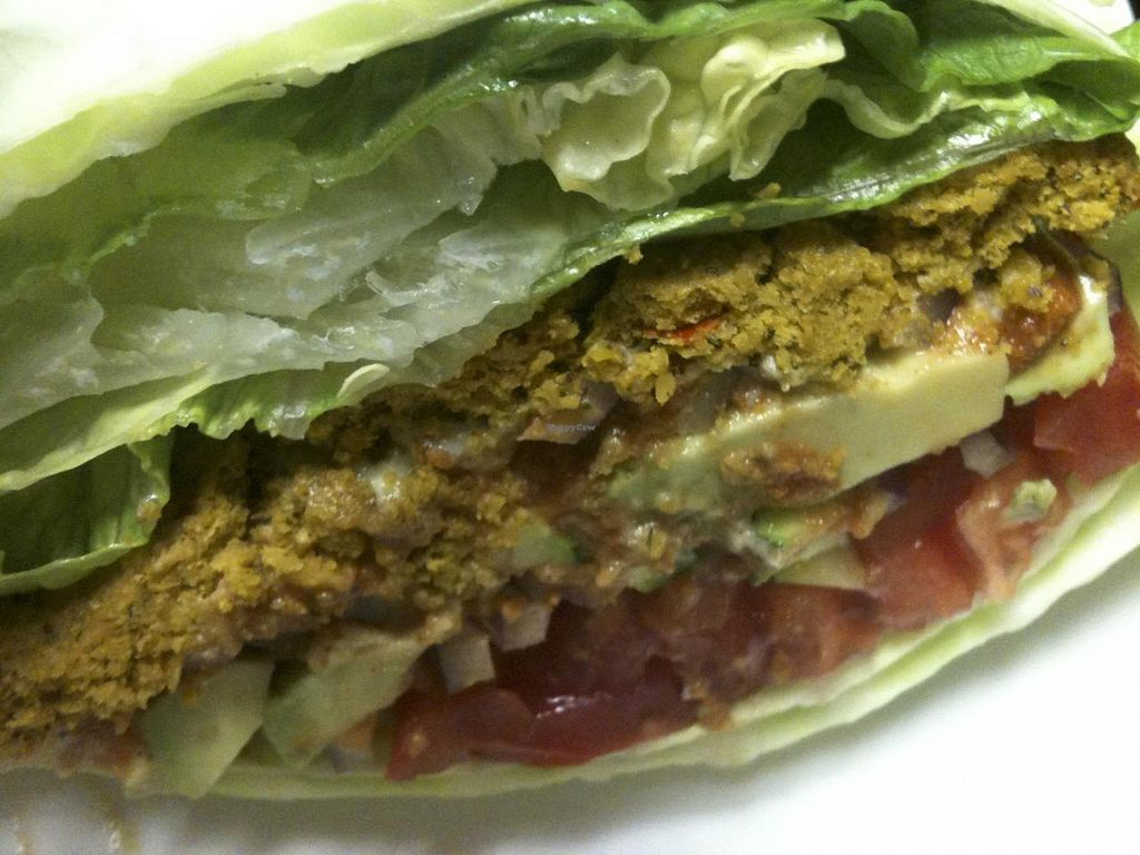 """Photo of Omar's Rawtopia  by <a href=""""/members/profile/omarsrawtopia"""">omarsrawtopia</a> <br/>Nut Burger <br/> February 6, 2014  - <a href='/contact/abuse/image/6268/63820'>Report</a>"""