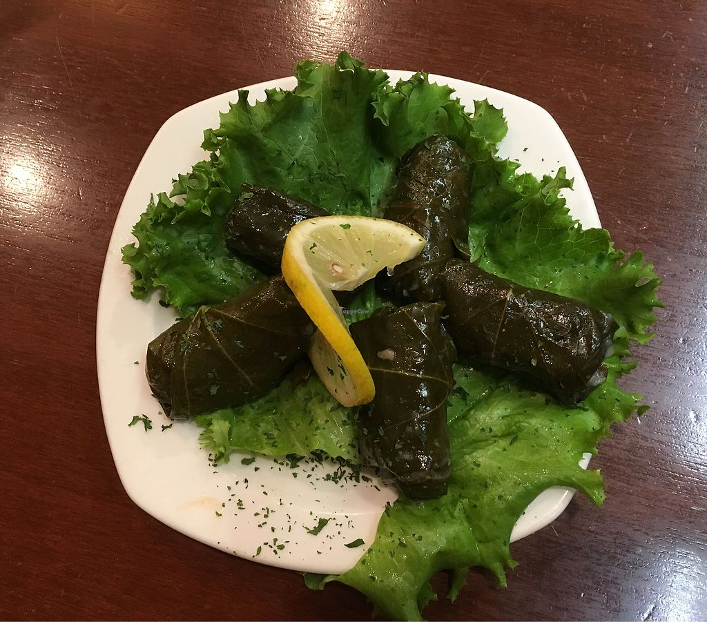 """Photo of Lovin' Spoonfuls  by <a href=""""/members/profile/KaylaKaplan"""">KaylaKaplan</a> <br/>dolmas  <br/> August 10, 2017  - <a href='/contact/abuse/image/6272/291000'>Report</a>"""