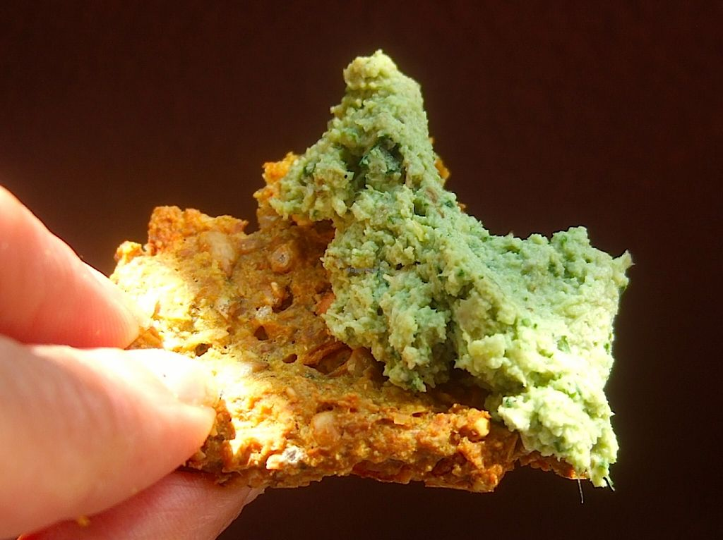 "Photo of Cruioso  by <a href=""/members/profile/Cruioso"">Cruioso</a> <br/>Gluten & Grain-free crackers (no rice, corn, or soy) with raw vegan paté <br/> August 30, 2015  - <a href='/contact/abuse/image/62744/115818'>Report</a>"