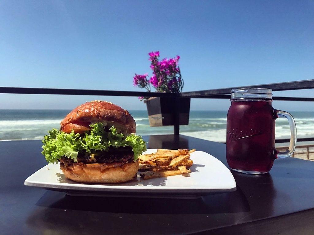 """Photo of La Veggicheria  by <a href=""""/members/profile/Mauricio%20Reza"""">Mauricio Reza</a> <br/>Vegan Burger <br/> April 11, 2017  - <a href='/contact/abuse/image/62861/247160'>Report</a>"""