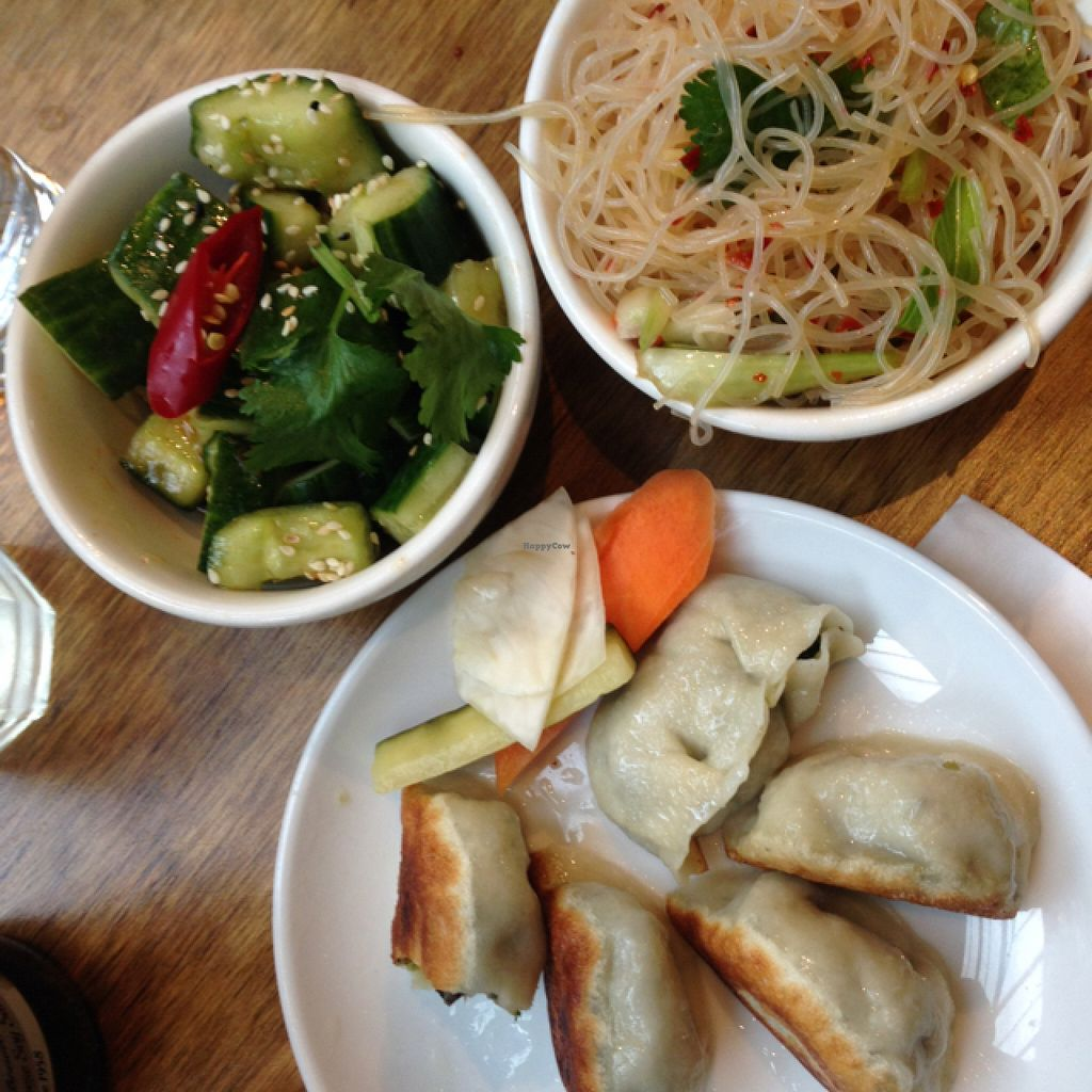 """Photo of mamalan - Brixton  by <a href=""""/members/profile/gotashima"""">gotashima</a> <br/>dumplings with salad <br/> June 16, 2016  - <a href='/contact/abuse/image/62883/154318'>Report</a>"""