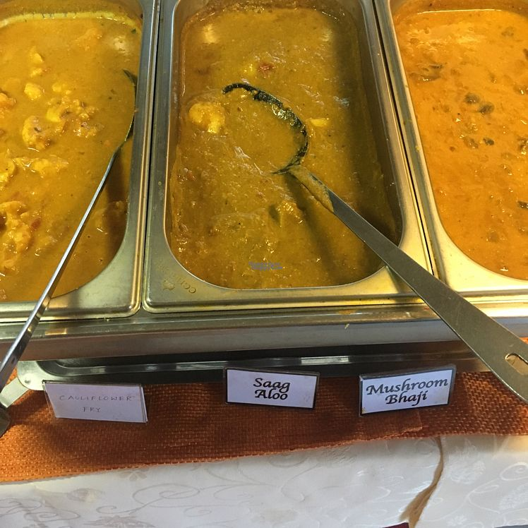 "Photo of Gandhi Tandoori  by <a href=""/members/profile/madseus"">madseus</a> <br/>All vegan buffet <br/> September 7, 2016  - <a href='/contact/abuse/image/62893/174141'>Report</a>"