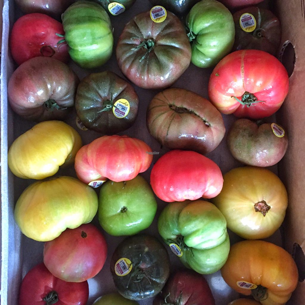 """Photo of Coconut Grove Farmer's Market  by <a href=""""/members/profile/lolacooks"""">lolacooks</a> <br/>heirloom tomatoes <br/> August 16, 2016  - <a href='/contact/abuse/image/6290/169168'>Report</a>"""