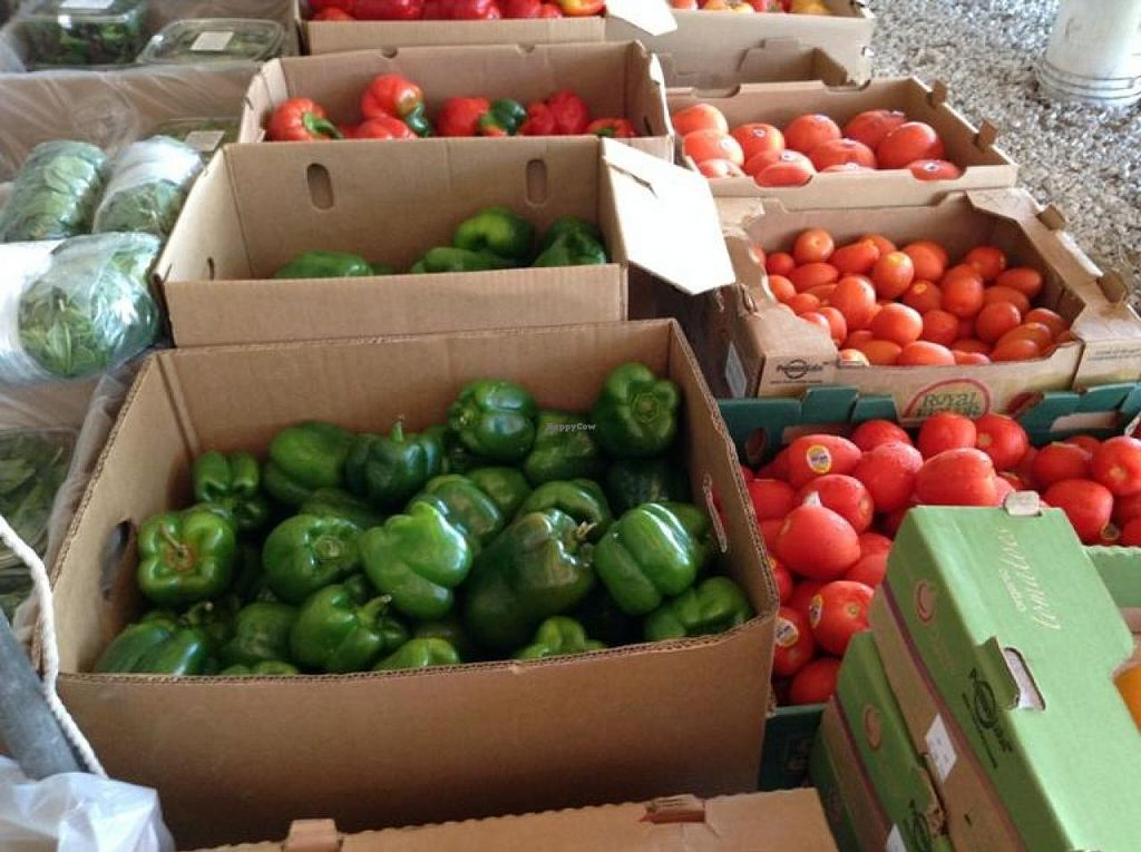 """Photo of Coconut Grove Farmer's Market  by <a href=""""/members/profile/Julie%20R"""">Julie R</a> <br/>Great, fresh, organic produce <br/> August 11, 2014  - <a href='/contact/abuse/image/6290/76666'>Report</a>"""