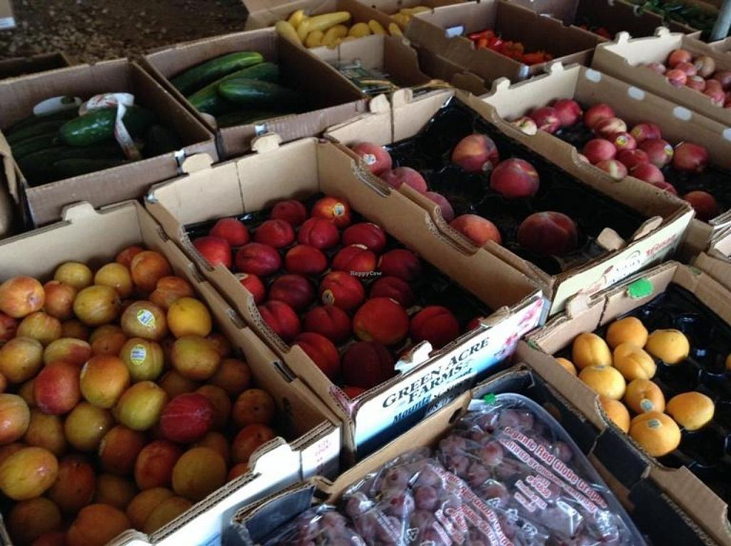 """Photo of Coconut Grove Farmer's Market  by <a href=""""/members/profile/Julie%20R"""">Julie R</a> <br/>Great, fresh, organic produce <br/> August 11, 2014  - <a href='/contact/abuse/image/6290/76668'>Report</a>"""