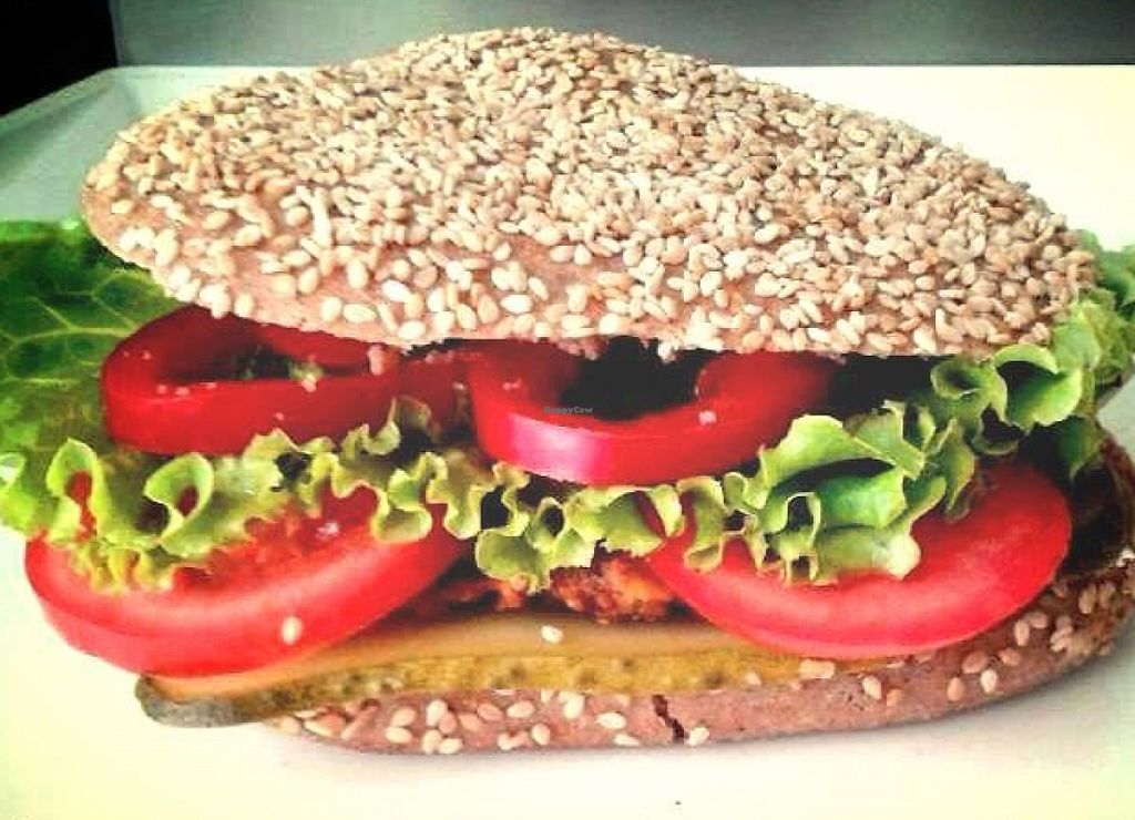 """Photo of Fast Food Vege Fino  by <a href=""""/members/profile/Mad%20Maggie"""">Mad Maggie</a> <br/>'Vegepurger' vegan burger in a whole wheat bun <br/> March 30, 2016  - <a href='/contact/abuse/image/62912/236152'>Report</a>"""