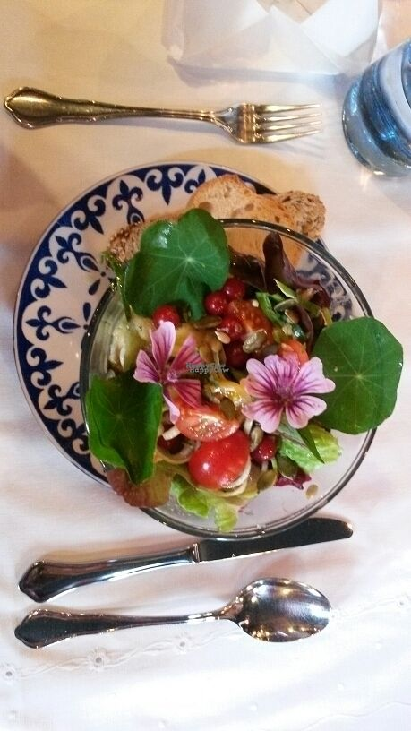 """Photo of Zum Webertor  by <a href=""""/members/profile/Suelita"""">Suelita</a> <br/>raw salad with nuts and berries <br/> October 9, 2016  - <a href='/contact/abuse/image/63037/180779'>Report</a>"""