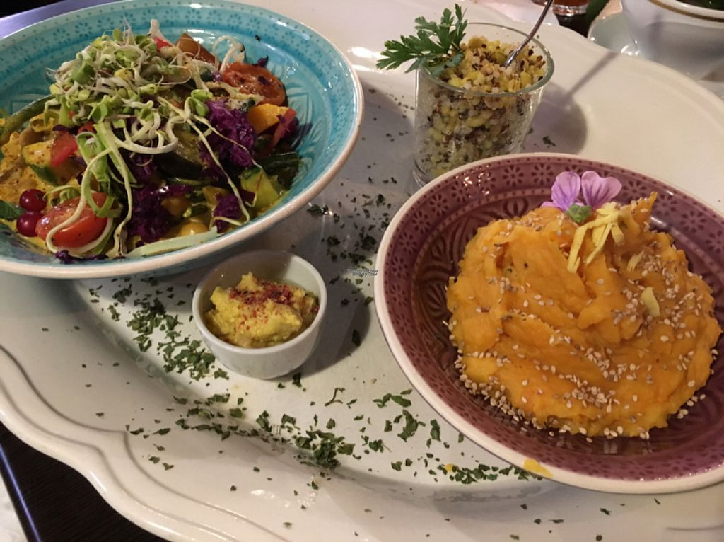 """Photo of Zum Webertor  by <a href=""""/members/profile/xgrinsekatzex"""">xgrinsekatzex</a> <br/>vegan curry with mashed sweet potatoes <br/> October 31, 2016  - <a href='/contact/abuse/image/63037/185547'>Report</a>"""