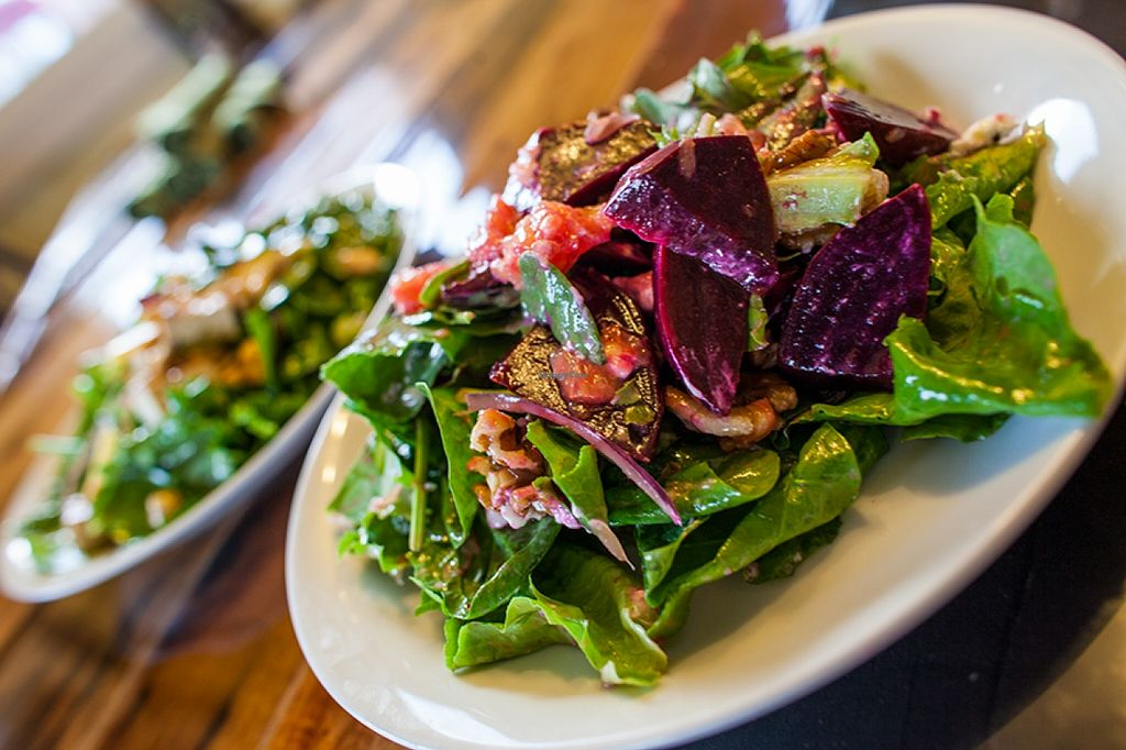 """Photo of CLOSED: Cultivate Cafe  by <a href=""""/members/profile/Cultivate_Cafe"""">Cultivate_Cafe</a> <br/>Beet Salad-Greenmans Garden greens, walnuts, grapefruit, goat cheese, red onion, and roasted beets. Grapefruit Vinaigrette  <br/> September 8, 2015  - <a href='/contact/abuse/image/63111/116940'>Report</a>"""
