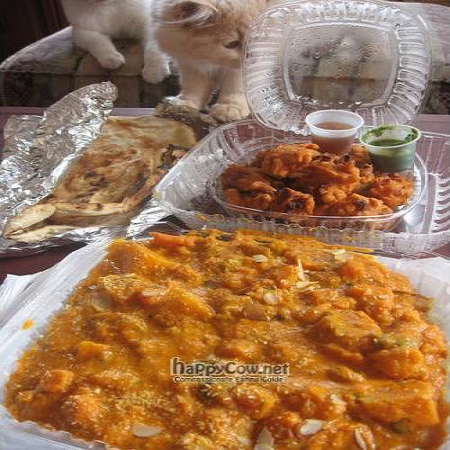 """Photo of CLOSED: India Chaat House  by <a href=""""/members/profile/Chelsea"""">Chelsea</a> <br/>Takeout - vegan navraten korma, naan, and pakoras with mint and tamarind chutney <br/> January 4, 2009  - <a href='/contact/abuse/image/6312/1358'>Report</a>"""
