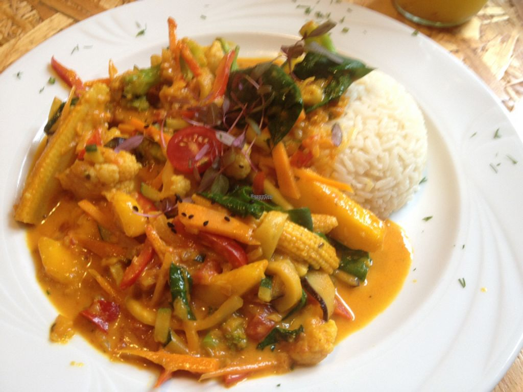 """Photo of Vega Bistro & Cafe  by <a href=""""/members/profile/silvisilvana"""">silvisilvana</a> <br/>Vegetable Curry <br/> August 22, 2016  - <a href='/contact/abuse/image/63191/170777'>Report</a>"""