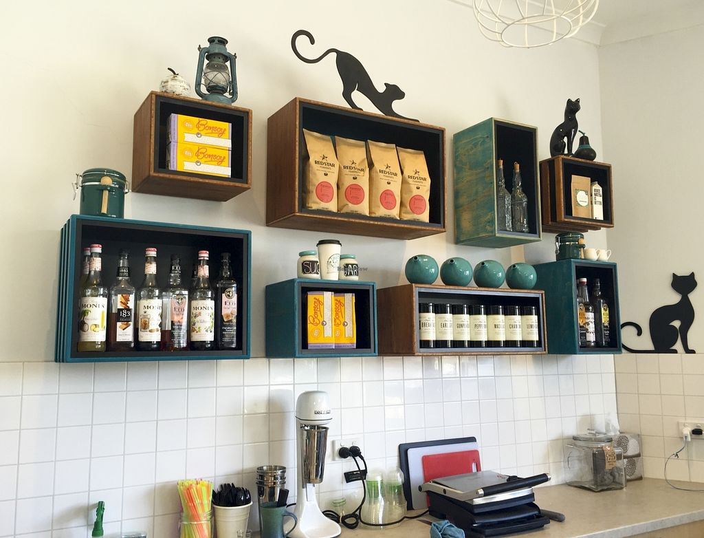 "Photo of Two Cats Espresso Bar  by <a href=""/members/profile/karlaess"">karlaess</a> <br/>Interior <br/> November 15, 2015  - <a href='/contact/abuse/image/63229/125042'>Report</a>"