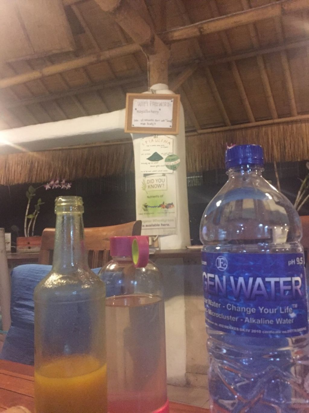 """Photo of Alkaline Restaurant  by <a href=""""/members/profile/rodgo"""">rodgo</a> <br/>The famous alkaline water and turmeric beverage  <br/> July 2, 2016  - <a href='/contact/abuse/image/63426/157288'>Report</a>"""