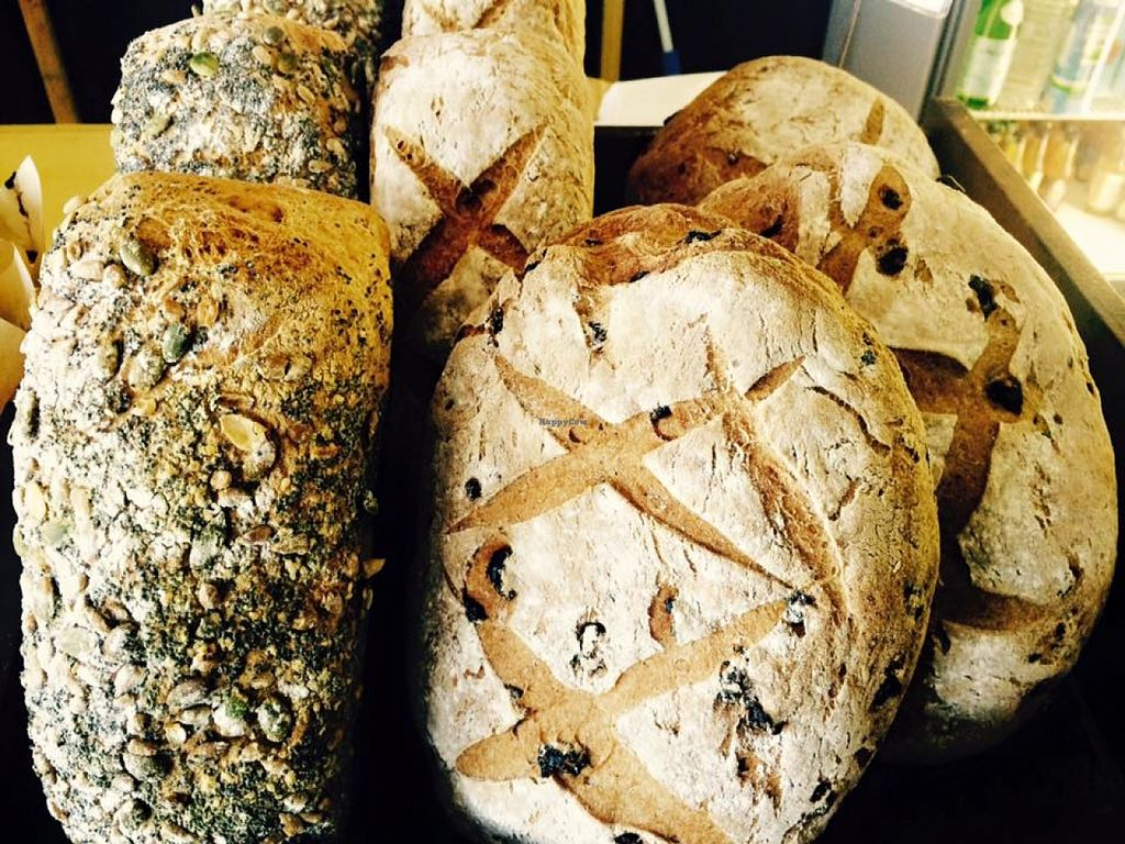 """Photo of Garden of Eden Organic & Health Foods  by <a href=""""/members/profile/Garden%20of%20Eden"""">Garden of Eden</a> <br/>Fresh baked Gluten/Dairy/Sugar FREE bread & muffins! <br/> September 18, 2015  - <a href='/contact/abuse/image/63475/118296'>Report</a>"""