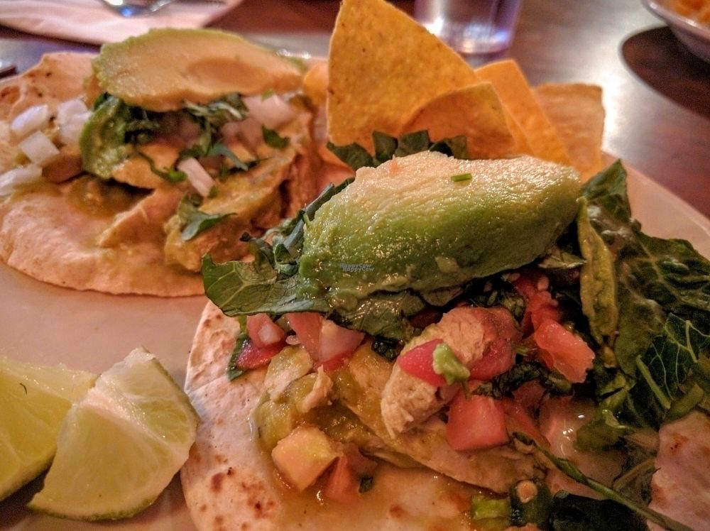"Photo of El Chupacabra - Lake Union Park  by <a href=""/members/profile/The%20Hungry%20Vegan"">The Hungry Vegan</a> <br/>2 vegan tacos <br/> September 18, 2016  - <a href='/contact/abuse/image/63505/176593'>Report</a>"