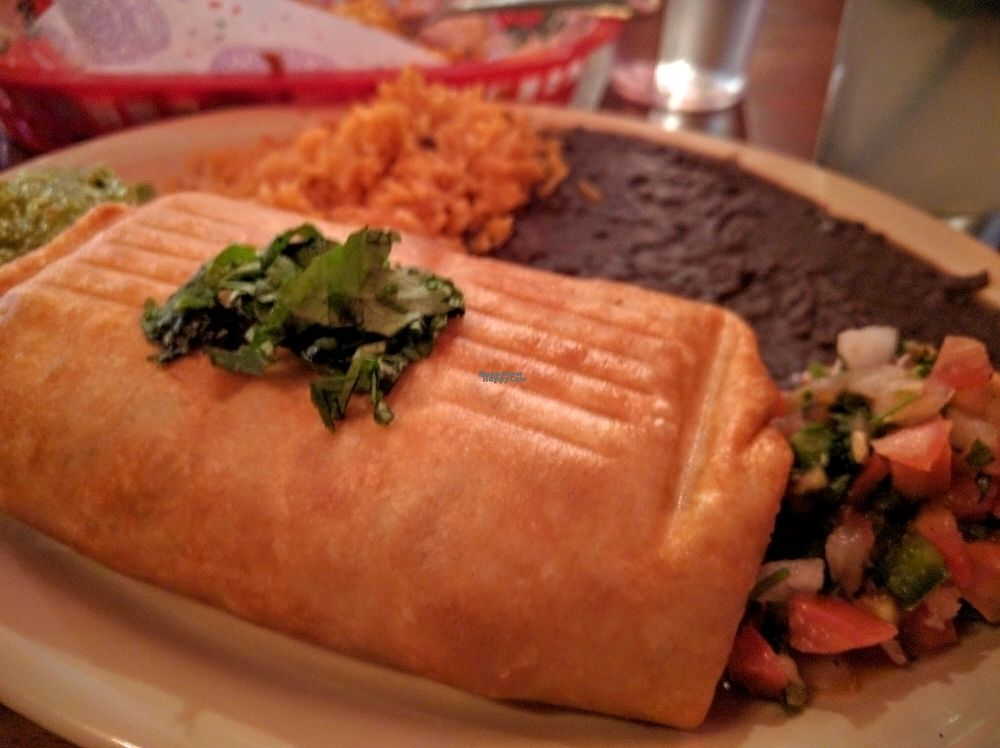 "Photo of El Chupacabra - Lake Union Park  by <a href=""/members/profile/The%20Hungry%20Vegan"">The Hungry Vegan</a> <br/>Vegan Chimichanga <br/> September 18, 2016  - <a href='/contact/abuse/image/63505/176595'>Report</a>"