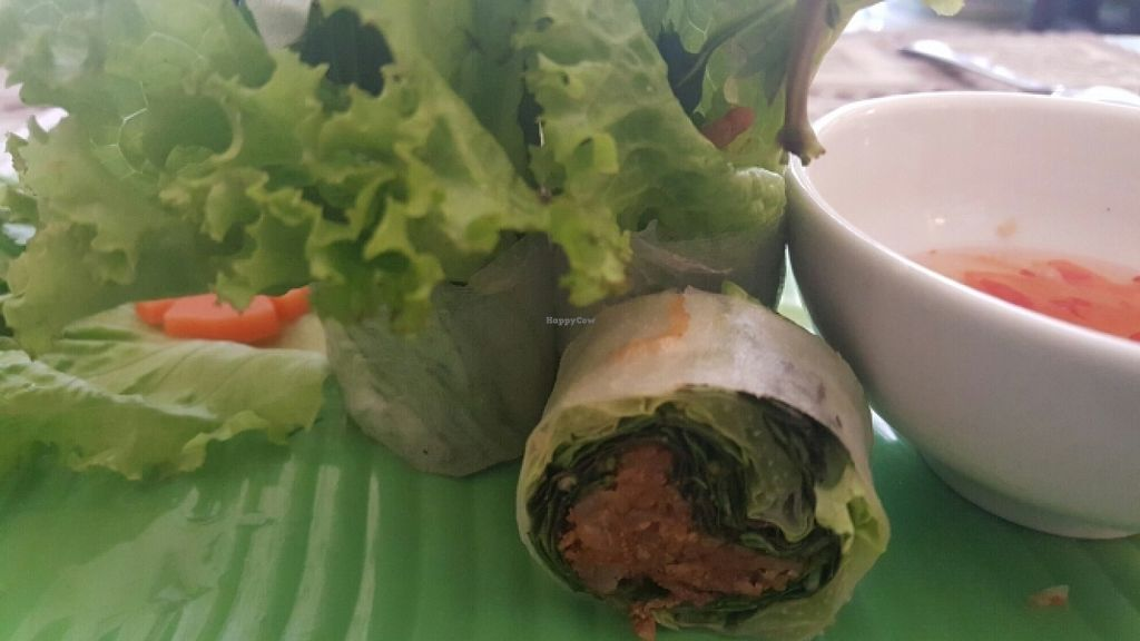 """Photo of Lau Nam Chay - An Nhien Thu  by <a href=""""/members/profile/Refinnej"""">Refinnej</a> <br/>cuon chay (vegetarian spring roll) <br/> December 27, 2015  - <a href='/contact/abuse/image/63763/130079'>Report</a>"""