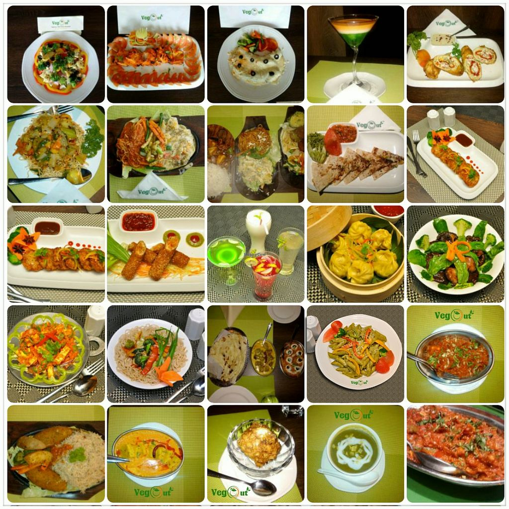 """Photo of VegOut  by <a href=""""/members/profile/vegout"""">vegout</a> <br/>Vegout <br/> September 26, 2015  - <a href='/contact/abuse/image/63916/119205'>Report</a>"""