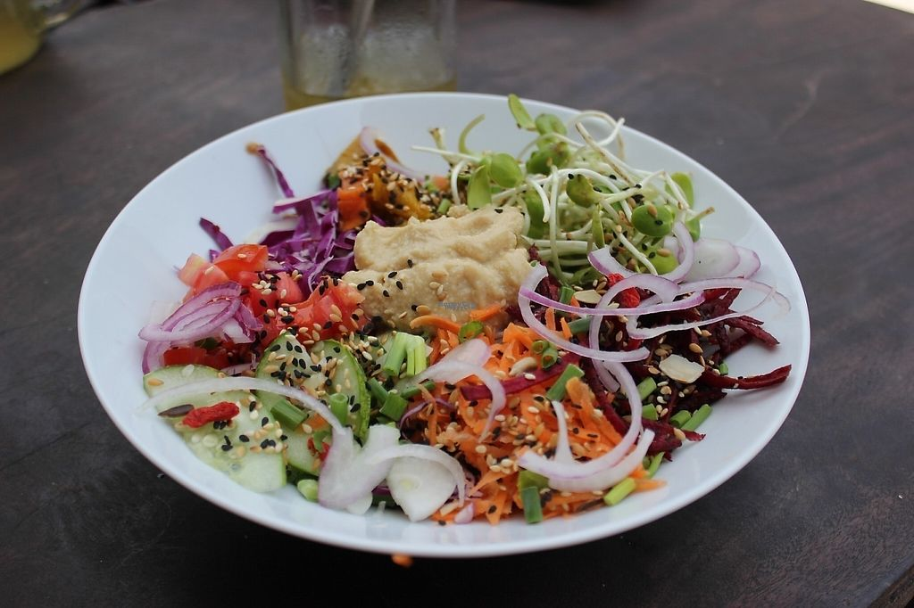 """Photo of VegetaBowl  by <a href=""""/members/profile/poweredbytofu"""">poweredbytofu</a> <br/>Fresh bowl, delicious. Garlicky tahini dressing <br/> February 15, 2017  - <a href='/contact/abuse/image/64003/226599'>Report</a>"""