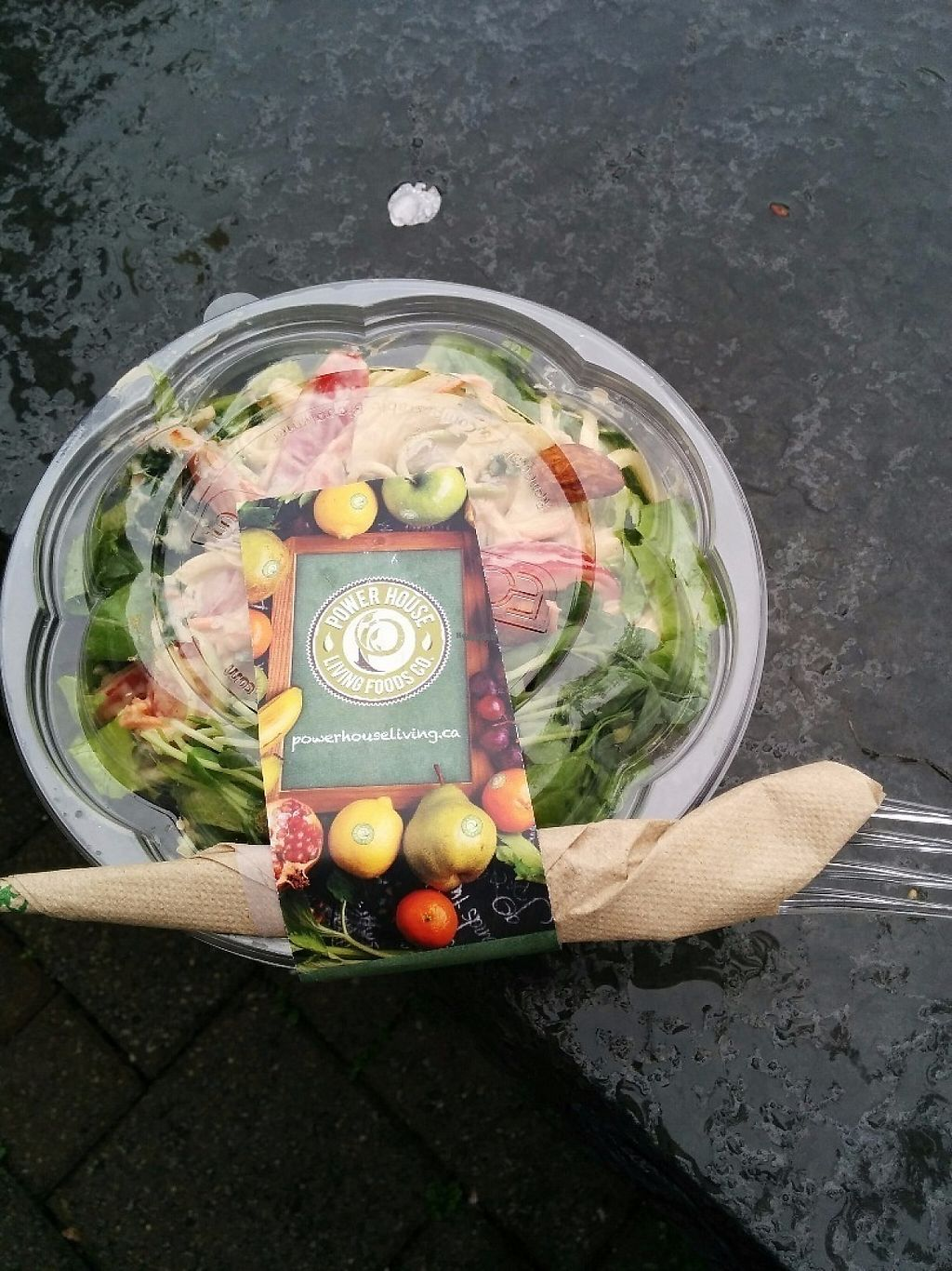 "Photo of CLOSED: Power House Living Foods  by <a href=""/members/profile/CLRtraveller"">CLRtraveller</a> <br/>takeaway Pad Thai Salad <br/> April 6, 2017  - <a href='/contact/abuse/image/64058/245223'>Report</a>"