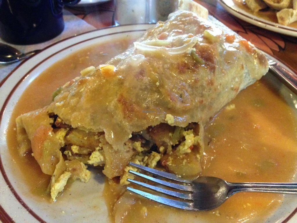 "Photo of Annapurna's World Vegetarian Cafe - UNM  by <a href=""/members/profile/cwarrick1"">cwarrick1</a> <br/>breakfast burrito  <br/> January 27, 2015  - <a href='/contact/abuse/image/6410/91456'>Report</a>"